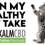 Can my healthy pet take CBD?