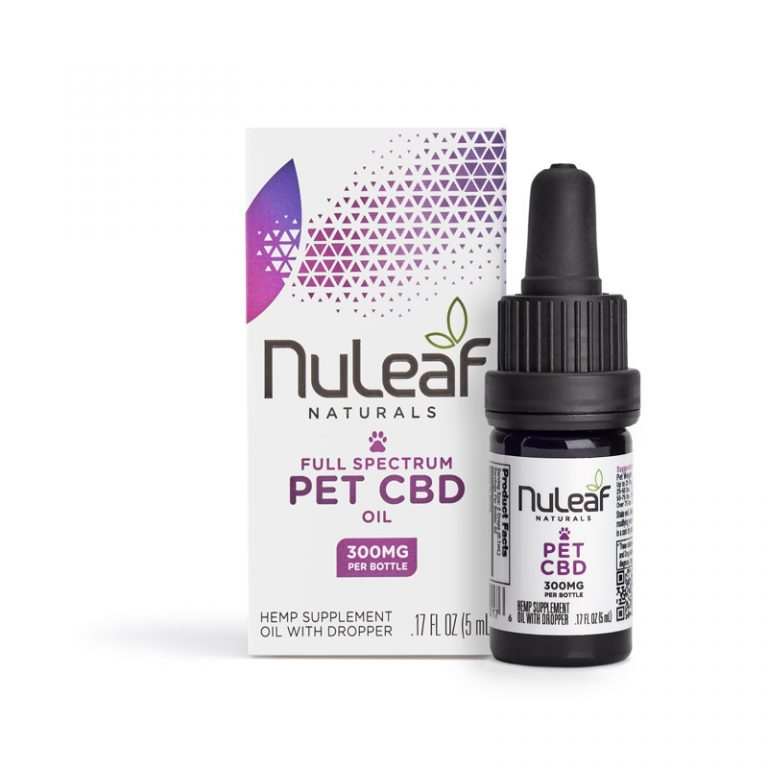 Is CBD Safe for Dogs and Cats? 2