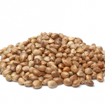 Your Super Skinny Protein 1
