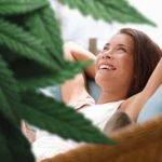 5 Uses of CBD to Upgrade Your Daily Routine 11